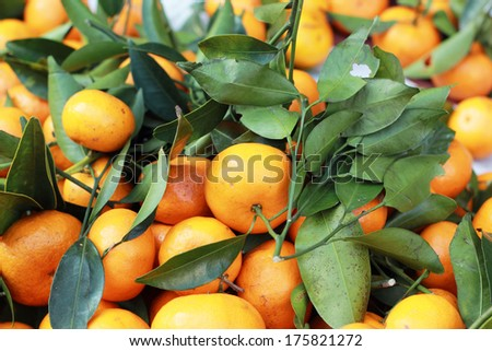 orange fruits in the market - stock photo