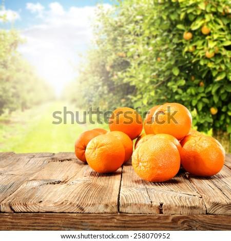 orange fruits on table  - stock photo