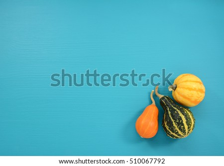 Orange, green and yellow gourds and squash on a background of wood painted turquoise with copy space