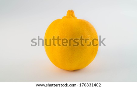 Orange Lime - stock photo