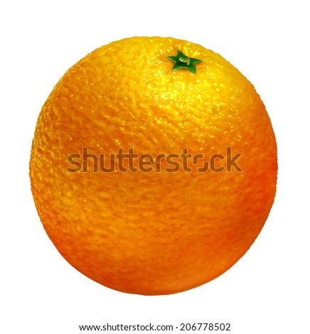 orange of illustration on white background - stock photo