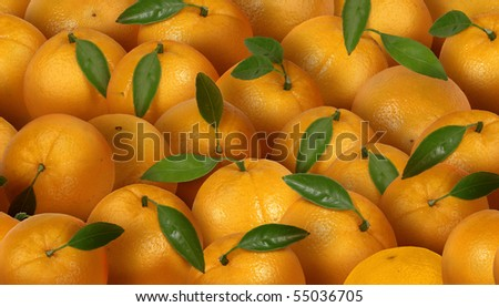Orange pattern. Allows continuity of pattern in the horizontal direction. - stock photo