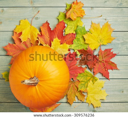 Orange pumpkin and maple leaves composition over the background made of green colored wooden boards - stock photo