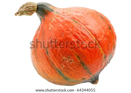 Orange pumpkin isolated on white background. Pumpkin is ecological and natural, grew in rural garden.
