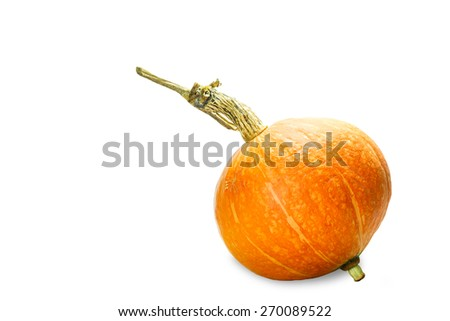 Orange pumpkin isolated on white with clipping path - stock photo