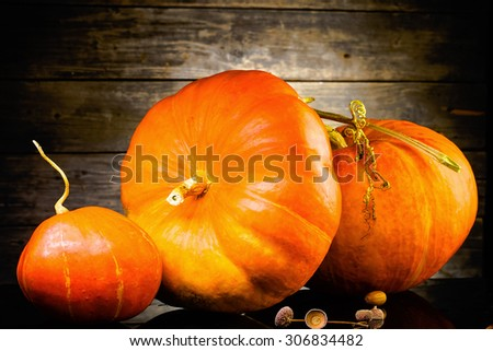 orange pumpkins in front of old wooden background, Autumn and halloween wallpaper - stock photo