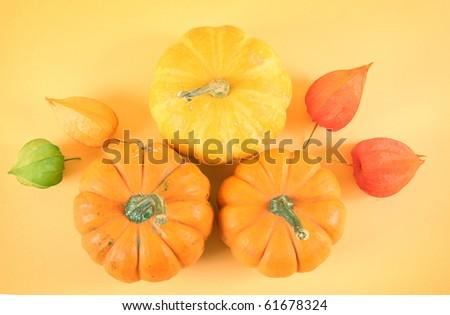 orange pumpkins on yellow background - stock photo