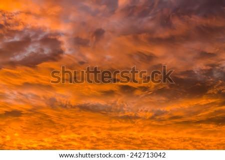 Orange skies. - stock photo