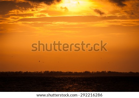 Orange sunset over water with birds flying in the sky overhead - stock photo
