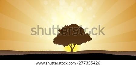 Orange Sunset with Landscape, Rays and Tree - stock photo