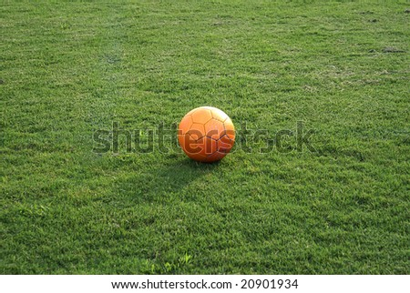 Orange tinted ball in green grass.