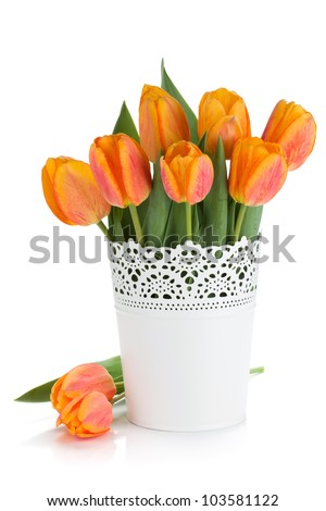 Orange tulips in flowerpot. Isolated on white background - stock photo