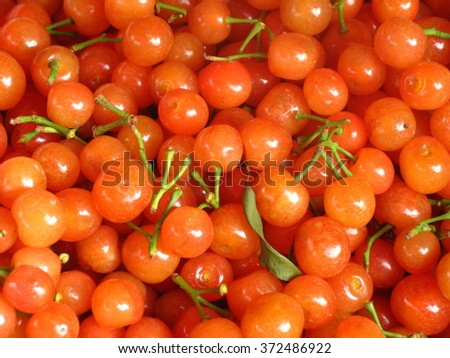 Orange vegetables and fruit - stock photo