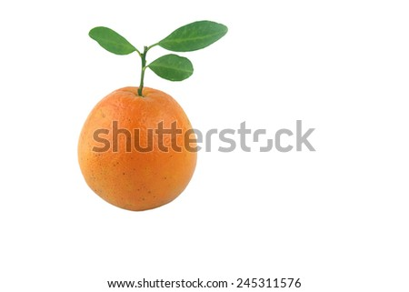 Orange with leaves