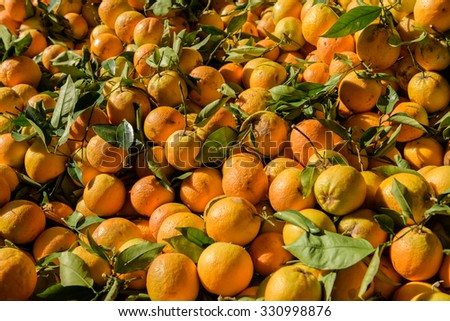 Oranges sold at a street market during sunny day - stock photo