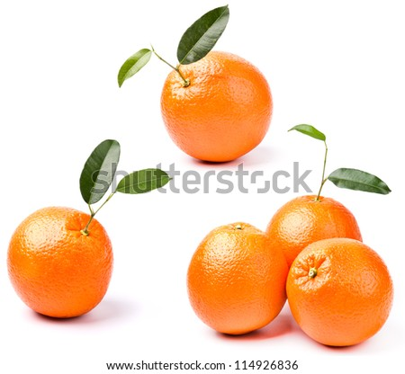 oranges with leaf isolated on white background - stock photo