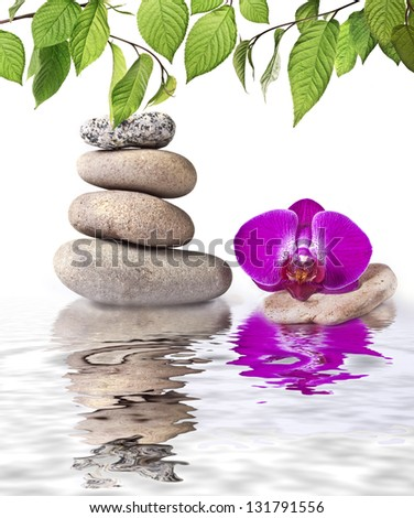 Orchid and stone with reflection - stock photo