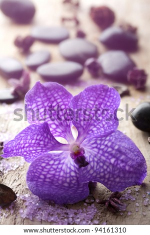 orchid flower for spa - stock photo