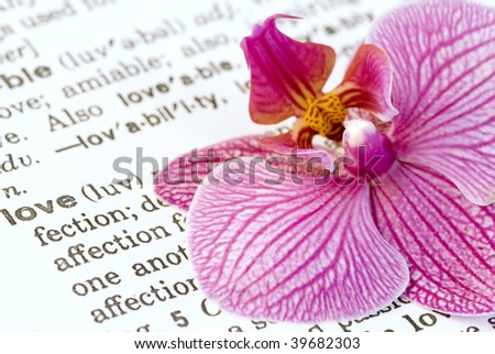 orchid flower on love definition text