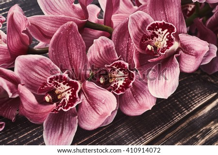 Orchid flowers with drops of water on wooden background - stock photo