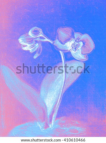 Orchid plant with flower and buds. Graphic arts.