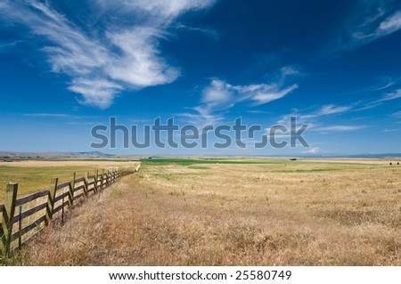 Oregon meadow with Mt Rainier in background - stock photo