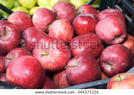 organic apples agriculture natural seasonal fruits