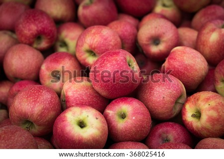 organic apples for sale at farmers market