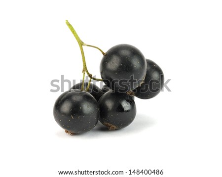 Organic black currant on a white background  - stock photo