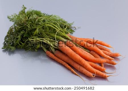 organic carrot - stock photo