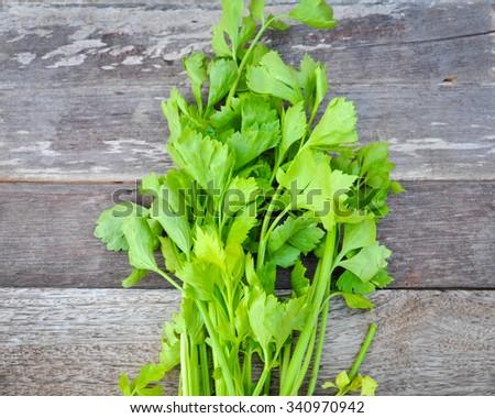 Organic celery - stock photo