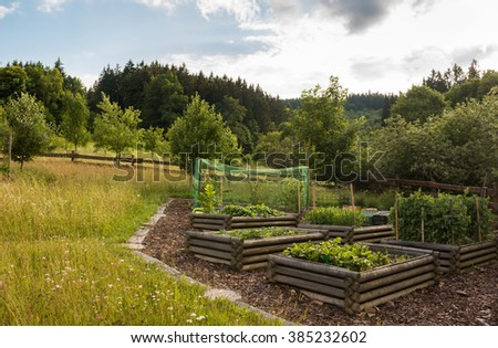 organic countryside garden in the orchard with raised beds with bio vegetable in the summer - stock photo