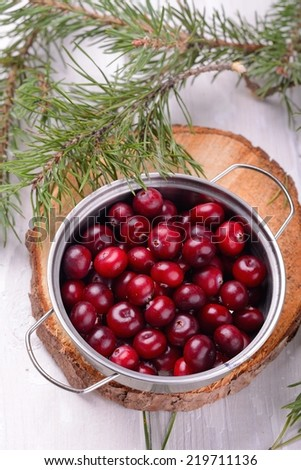organic cranberries in the northern forest container on natural wooden table with pine branches alive - stock photo