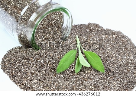 Organic dry chia seeds on white background with leaves