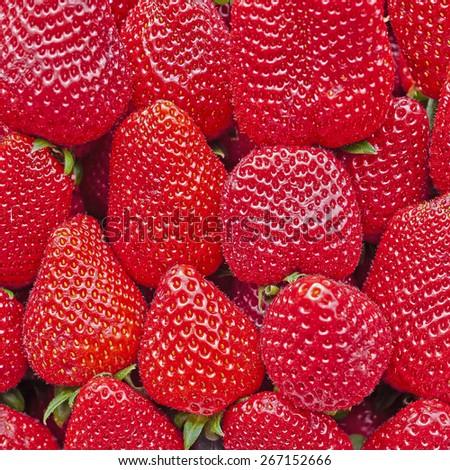 organic fresh strawberries close up, tasty background - stock photo