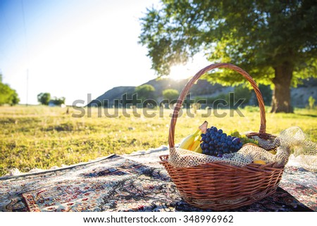 Organic fruit in basket in summer grass. Fresh grapes, bananas and oranges in nature. - stock photo