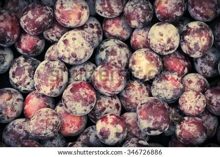 Organic juicy ripe plums at local farmers market - stock photo