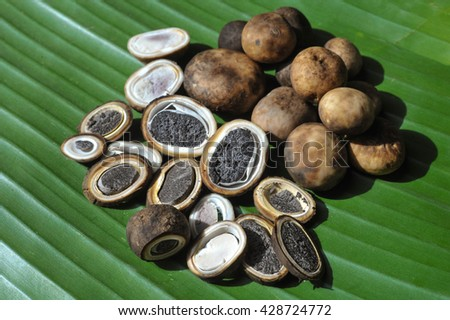 Organic mushroom for cooking, natural product from soil on banana leave. Selected focus area. We can find this mushroom during rainy season(May-June) - stock photo