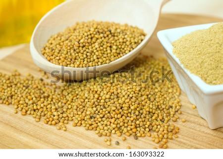 Organic mustard seeds and ground mustard - stock photo