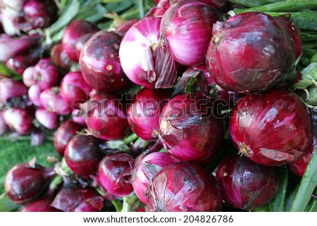 organic purple onion bulb bunch at market place (shallow deep of field)