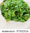 Organic purslane on neutral background with copy space - stock photo