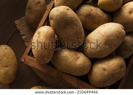 Organic Raw Brown Potatoes in a Basket - stock photo