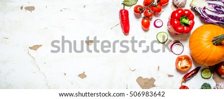 Organic raw vegetables. Sliced fresh vegetables with pumpkin. On rustic background .