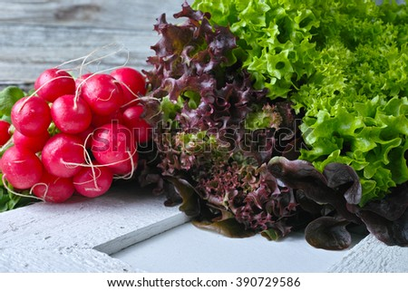 Organic red radish and multicolored fresh lettuce salad on wooden background, copy space - stock photo