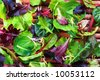 Organic Spring Mix Lettuce - stock photo