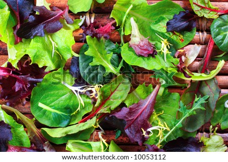 Organic Spring Mix Lettuce - stock photo