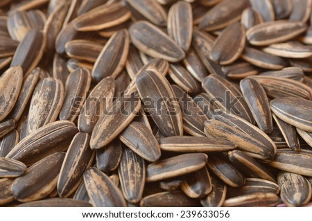 organic sun flower seed with salt  the great snack for every one in the free time after the busy day.