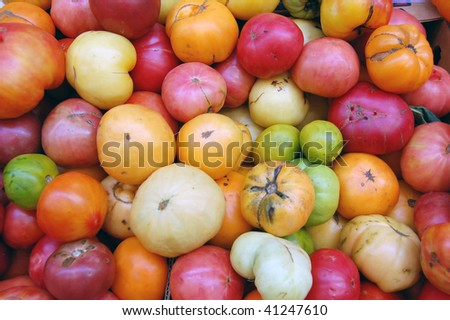 organic tomatoes - stock photo