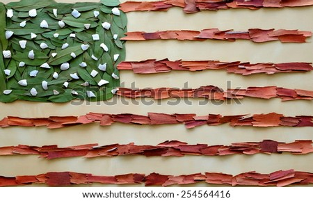 Organic USA flag made with organic materials such as leaves and red bark - stock photo