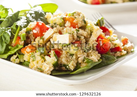 Organic Vegan Quinoa with vegetables like tomato, tofu, and cucumber - stock photo